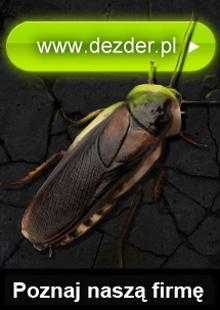 Banner3 Dez-Der